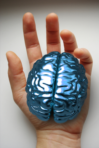 cerebro en la mano